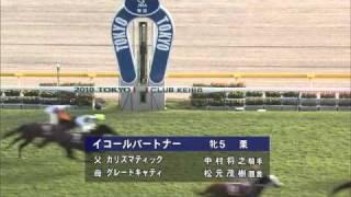 2010年 東京ハイジャンプ 勝利騎手インタビュー thumbnail