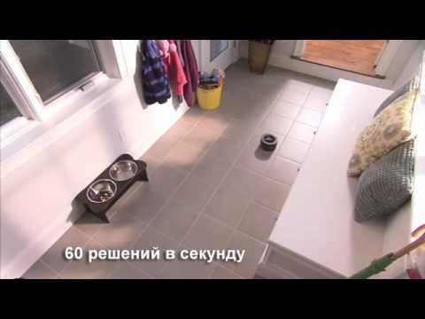 Видео Дома из кедра краска