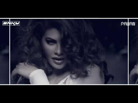 heeriye---race-3-(remix)-promo-  -dj-snky-&-pawan