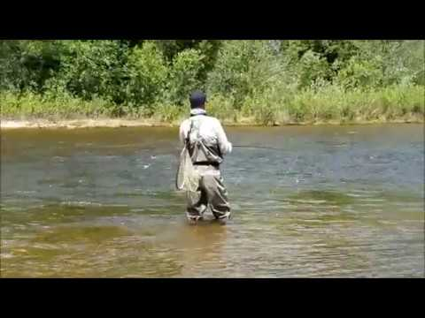 Fishing The Poudre River!