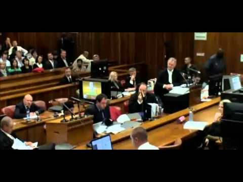 Oscar Pistorius Trial. Day 3. Part 2