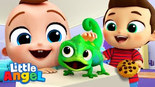 My New Little Pet Song | Little Angel Kid Songs And Nursery Rhymes