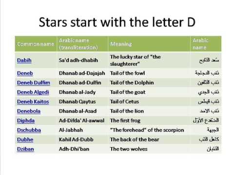 arab porn star name