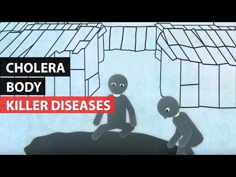 KILLER DISEASES | How the Body Reacts to Cholera