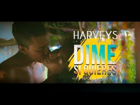 Harveys - Dime si Quieres (video oficial) / La H Que Màs Suena