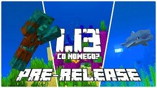 Minecraft 1.13: [PRE-RELEASE 6] Co Nowego? WIEMY KIEDY 1.13! Ulepszone Delfiny! Czcionka!
