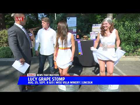 Stomping Grapes with Wise Villa Winery on Fox 40 - VidVui
