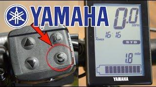 How To: Use Yamaha Display