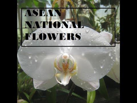 ASEAN National Flowers