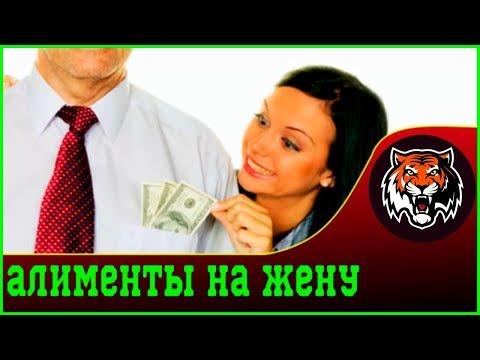 Платить алименты на бывшую жену | Ирина Волынец Алименты бывшим супругам