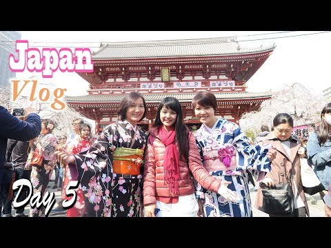 Chococherry Japan Vlog - Day 5 - Asakusa-Nikimase, Food Stall, Shopping, Ramen