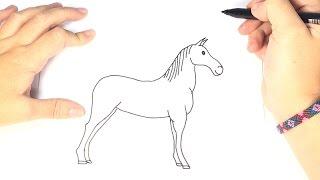 Cómo dibujar un Caballo Para Niños