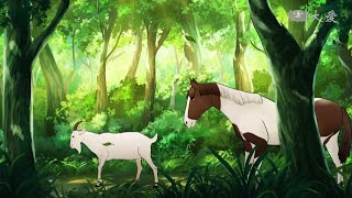 Stories told by Master--the friendshoip between the horse and the g...