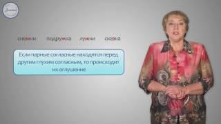 Русский 3 Правописание проверяемых букв согласных в корне слова