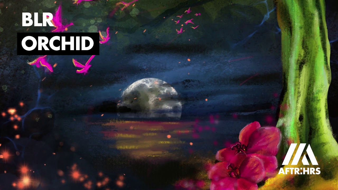Download BLR - Orchid