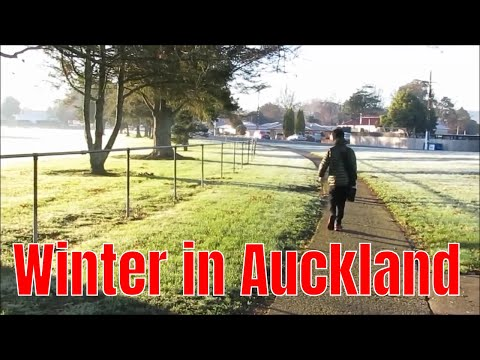 What Is Winter Like In Auckland?