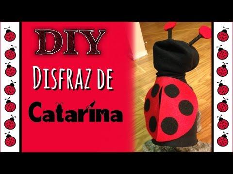 #8 DIY Disfraz de 🐞 Catarina 🐞