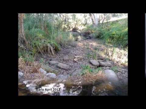 Three years of environmental flows in the South Para, Torrens and Onkaparinga Rivers