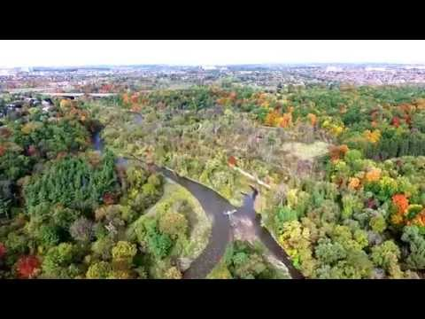 Mississauga: Riverwood Conservancy, Fall 2015