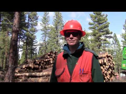 Forest Management Central Oregon April 19th 2018