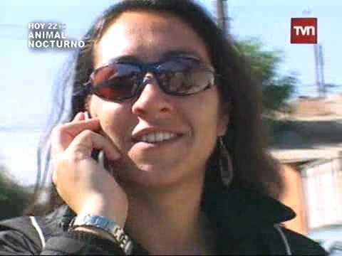 CAMIONEROS TVN: La vida de una mujer a cargo de un camión