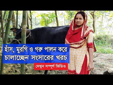 সফল নারী উদ্যোক্তা | হাঁস, মুরগি ও গরু পালন করে চালাচ্ছেন সংসারের খরচ | Cow Dairy Farm in Bangladesh