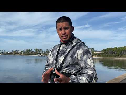 How To Catch Pinfish - Easy And Effective Method