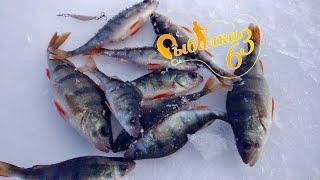 Ловля окуня в глухозимье на блесну рыбалка в марте