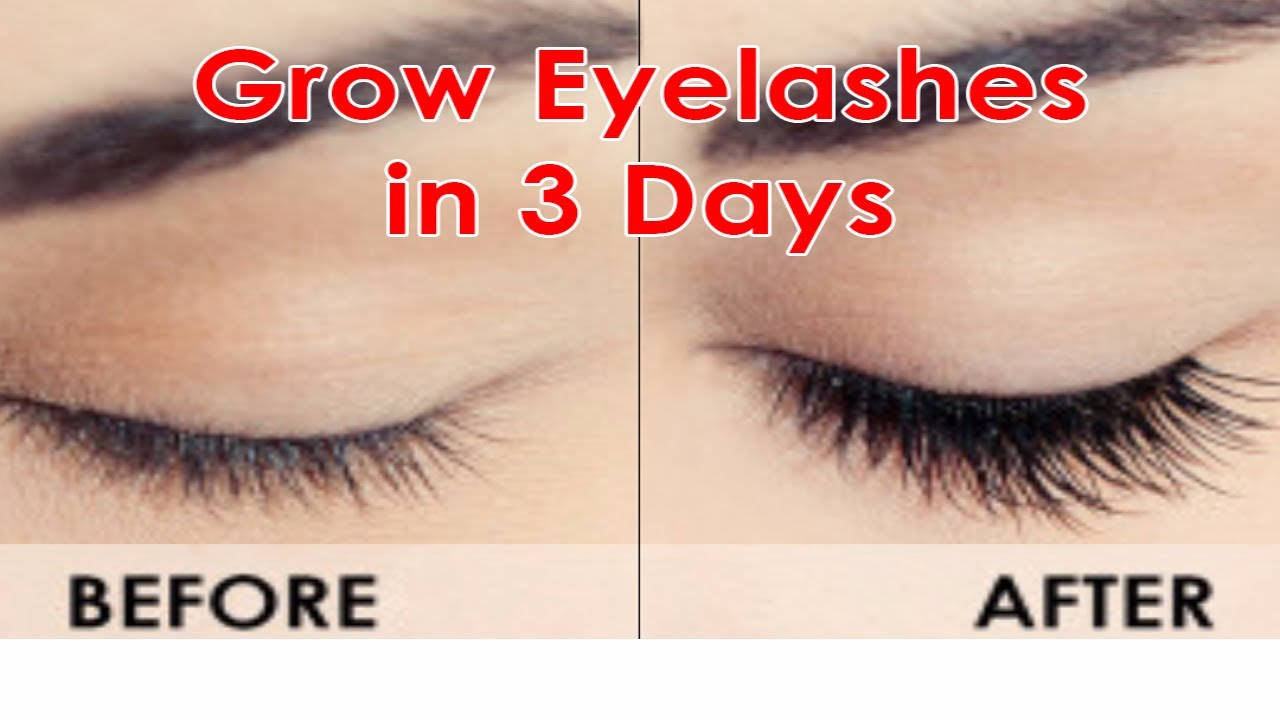 How To Grow Long Eyelashes Fast Guaranteed Results In 3 Days
