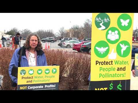 Conservation Groups and Rep. Blumenauer Call for Action on Pollinator-killing Pesticides