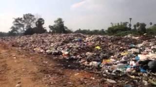 Dump Dwellers