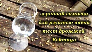 Зерновой самогон для ржаного виски. Тест дрожжей Bekmaya(Зерновой самогон для ржаного виски. Тест дрожжей Bekmaya Дрожжи Bekmaya - http://www.lesaffre.ru/production/consumer/soft_fast-acting_yeast/321.html., 2016-04-18T12:58:52.000Z)