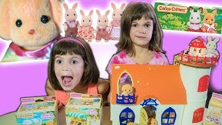 Crazy Twins Unbox and Review NEW CALICO CRITTERS toy!