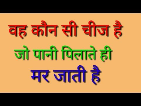 Paheliyan | GK Question | Riddles | Bujho  To Jaane