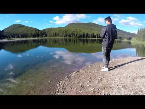 Peppers Lake Fishing & Camping