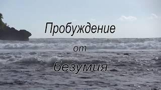 Пробуждение от безумия.  Фильм Зои Янковской