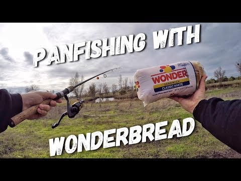 Catching Panfish With Wonder Bread