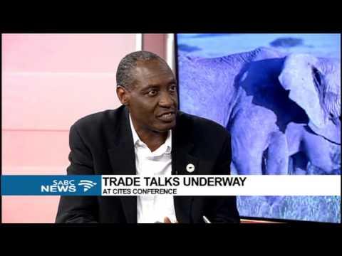 DISCUSSION: Trade talks underway at CITES