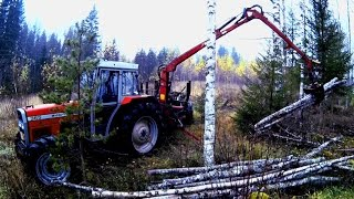 Forest Work - Massey Ferguson 365 and Forest Trailer