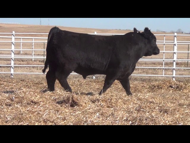 Express Ranches Lot 87