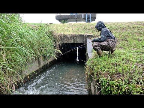 大雨の中魚が溜まる水門があるトンネルで釣りをしてみたら・・・