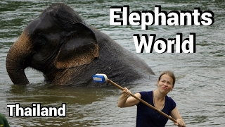 Viel Bla bla in ElephantsWorld Thailand