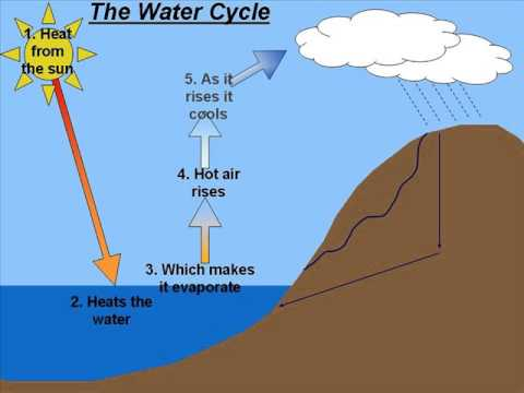 ks3 gcse geography water cycle youtube