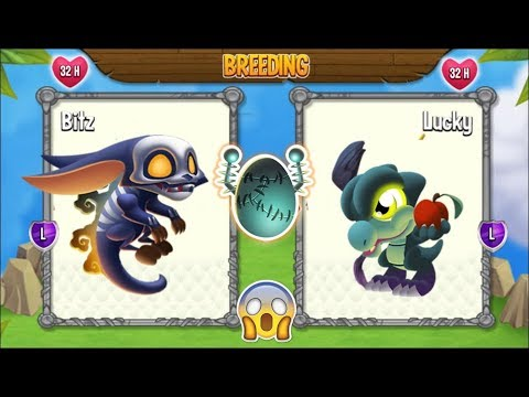 NEW BREEDING: Frightening Dragon & Witch Dragon | DRAGON CITY ????