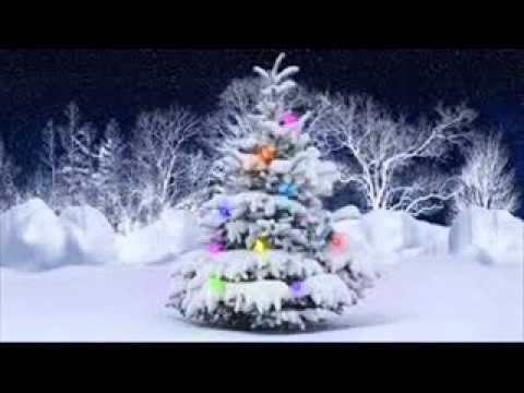 white christmas chicago