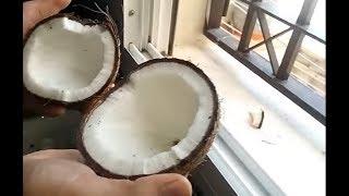 Как быстро раскрыть кокос. 🌴