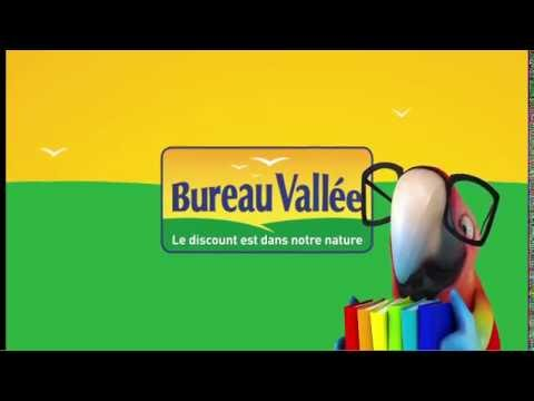 Voix off Dcale Bureau Vallee Perroquet YouTube