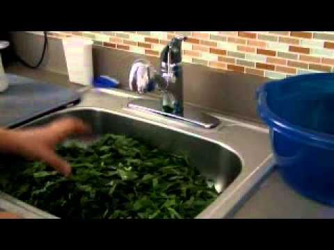 How to Prep and Clean Collard Greens 101.wmv