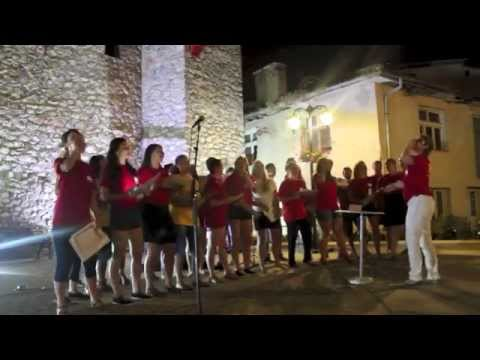 Voices of Europe & Roma event 2014 - Ohrid, Macedonia
