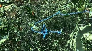 Meeuw doet een dagje Amsterdam